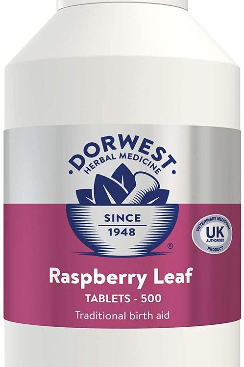 Dorwest Raspberry leaf tab x100