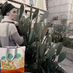 Cactus y rosas
