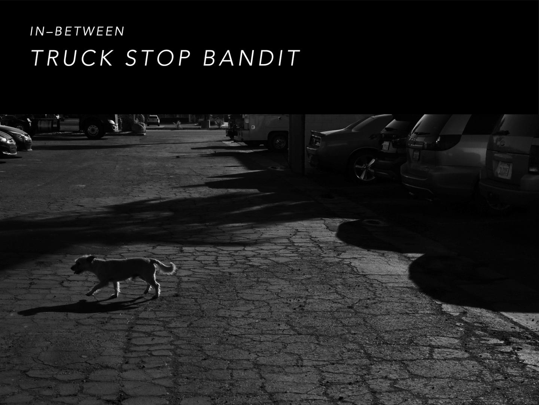 TRUCK STOP BANDIT