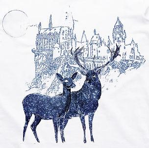 deer (1).jpg