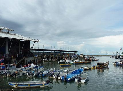 Marché aux poissons Panama city au Panama