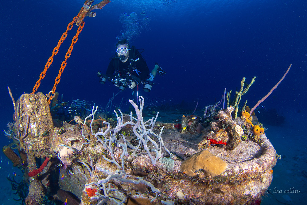 Diver visits the Wreck of the Nicholson on Sunset House reef in Grand Cayman.