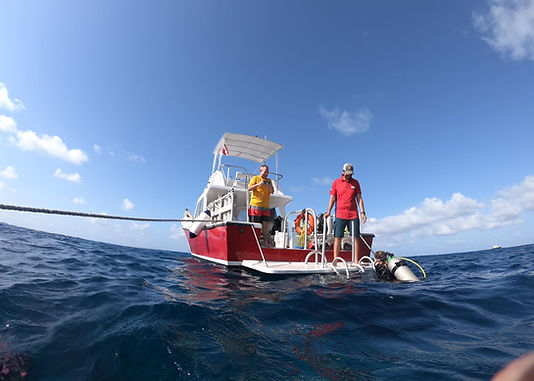 Boat diving.jpg