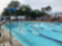 Sandsharks Swim.png