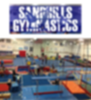Copy of Sandhills Gymnastics.png