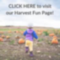 Harvest Fun.png
