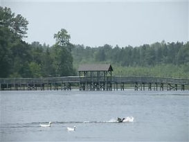Things to do and family activities in Moore County, NC, Southern Pines, Pinehurst, Aberdeen
