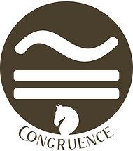 Congruence_OL.jpg