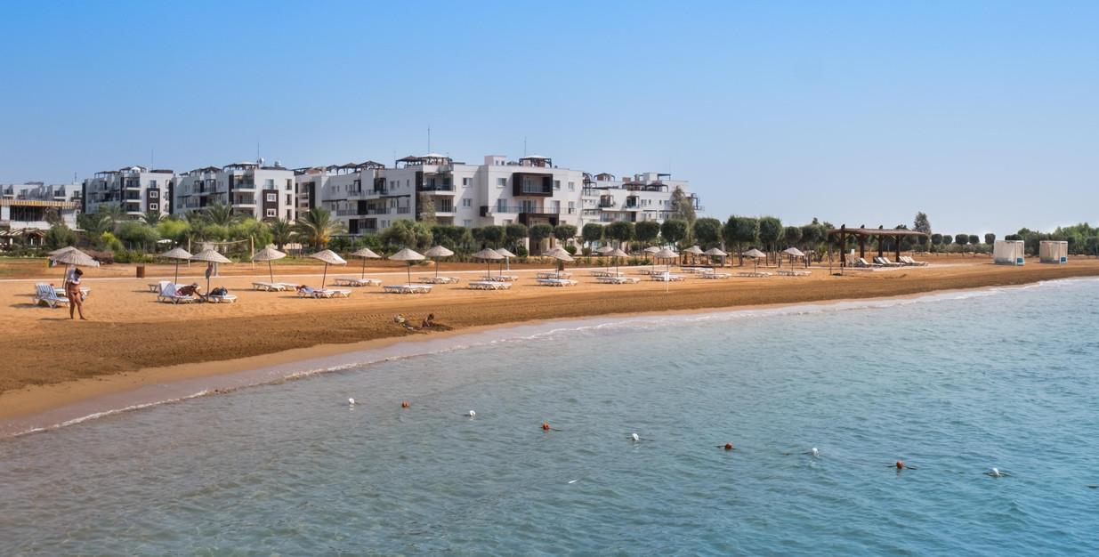 thalassa beach 2019 (21).JPG
