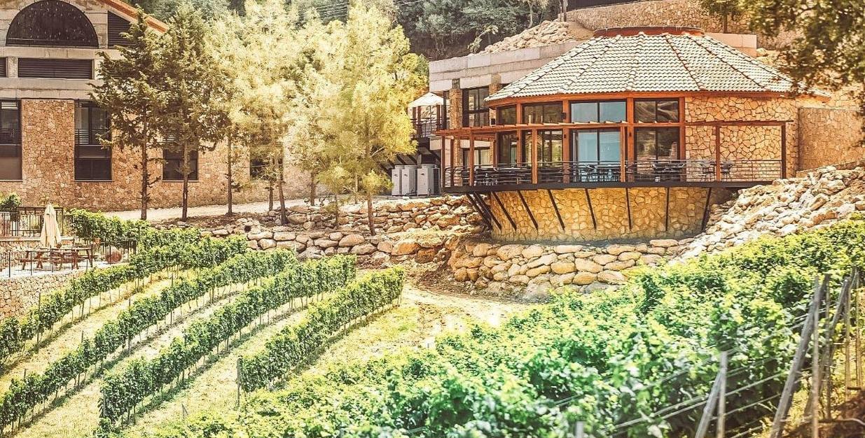 Wine-Center-1.jpg