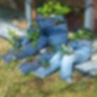20170309_114627_HDR.jpg