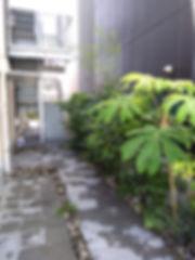新社屋の設計 大阪 | 大阪 | Cooplanning | 尼崎市大西町 尼崎のオフィス アプローチ.植栽プラン グリーンスペース