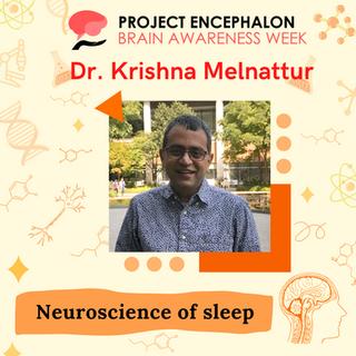Krishna Melnattur