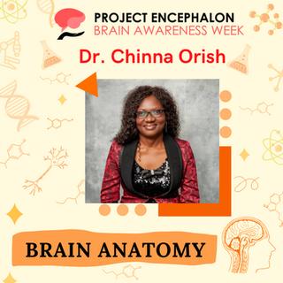 Chinna Orish