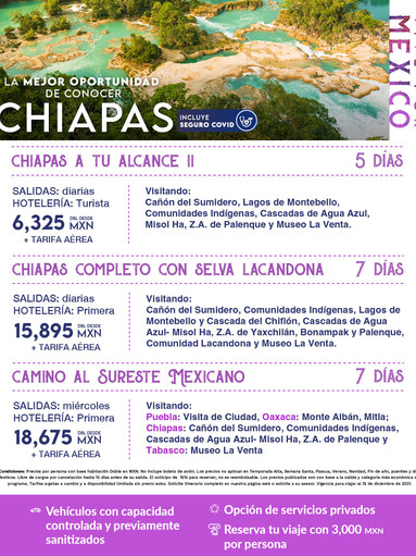 flayer_CHIAPAS-2.jpg