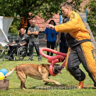 Mondioring Contest Sempach