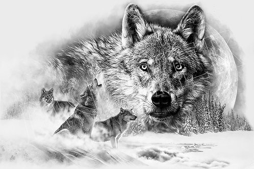 Wolfs Collage
