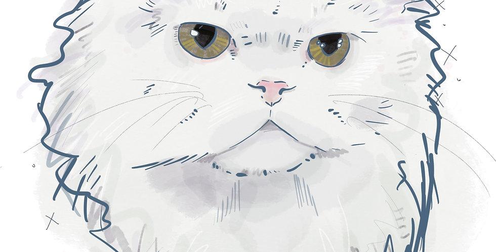 Digital PET Portrait Deposit