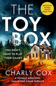 THE TOYBOX- Jacket cover.jpg