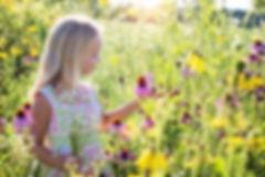 little-girl-2516578__340.jpg