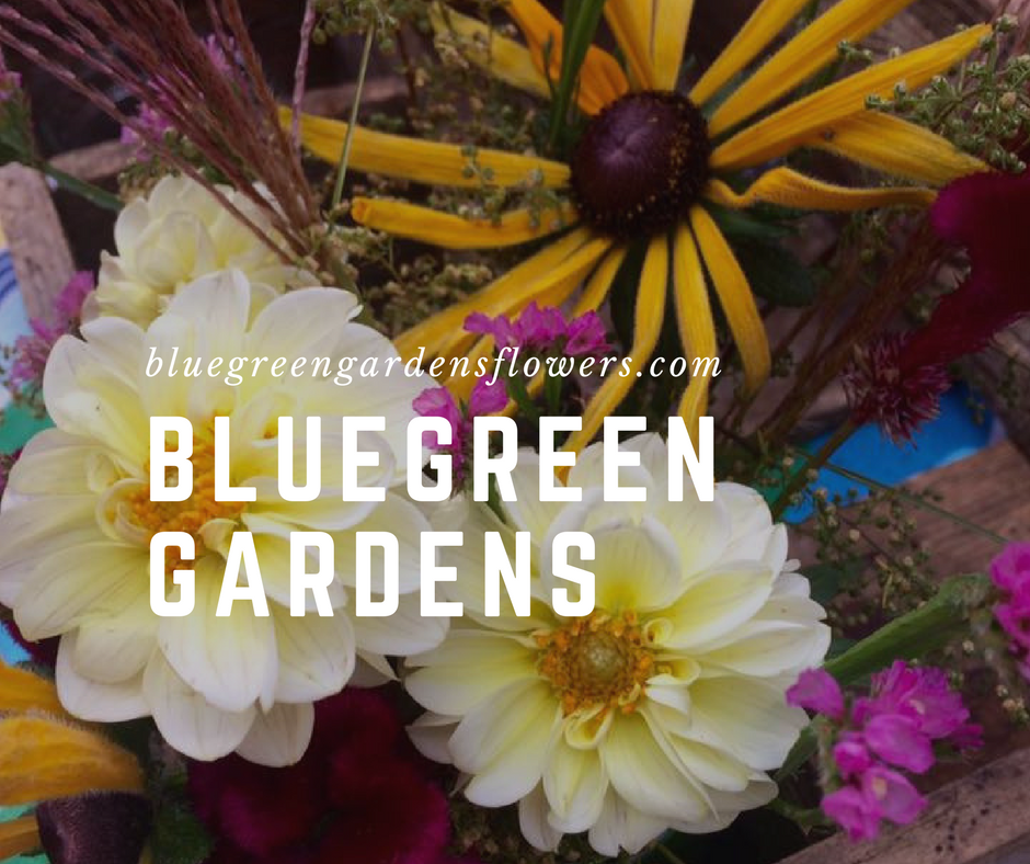 Bluegreen Gardens