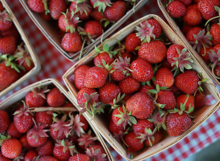 Bexley Farmers Market: June 4