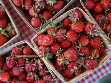 Bexley Farmers Market: June 4