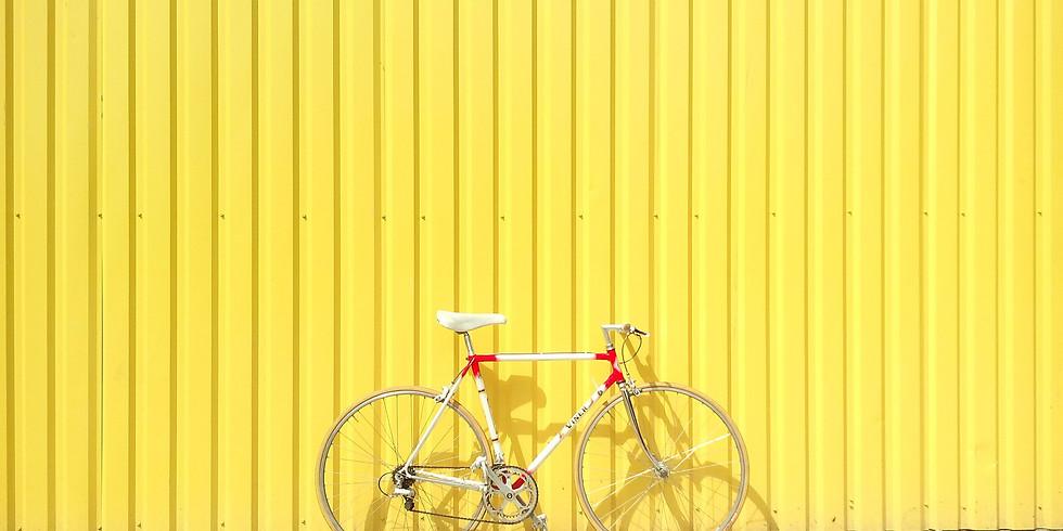 Taller Mensual de Bicicleta