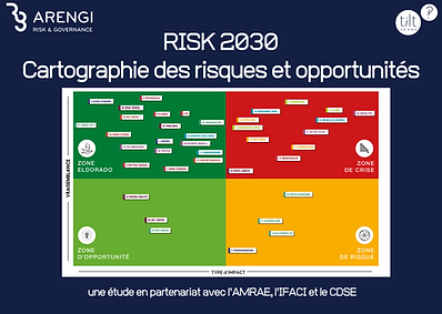 Poster - Risk 2030.png