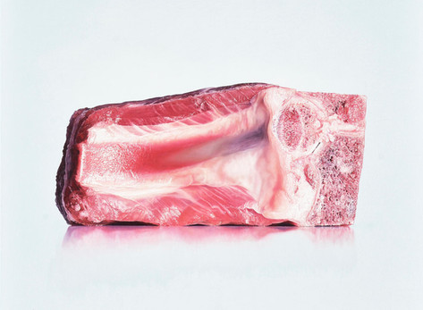 Rohes Fleisch auf Klonblog
