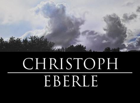 Новая картина - Christoph Eberle (МАСЛО)