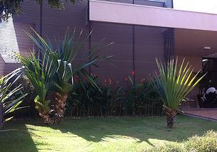 Casa Nova Aliança Sul-Ribeirão Preto