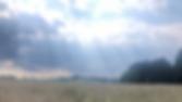Gewitterstimmung%202_edited.png