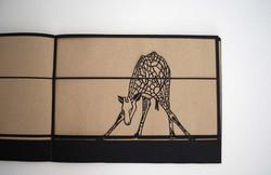 ARTIST BOOK OKAPI: KURZHALSGIRAFFE