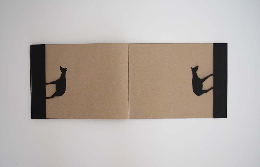 ARTIST BOOK OKAPI: PASS