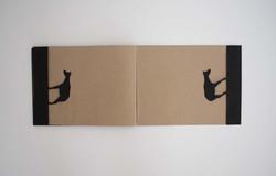 ARTIST BOOK OKAPI: PASS