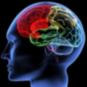 занятия с нейропсихологом