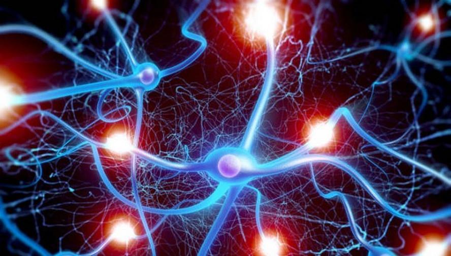 нейрон нейропсихологическая коррекция