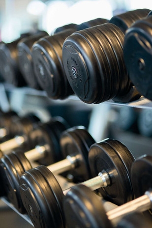 Blue Zone Fitness -Free Weights