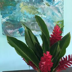 Ginger Plant -La Casa Azul