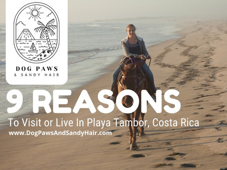 9 Reasons To Vacation (Or Live) In Playa Tambor -Costa Rica.