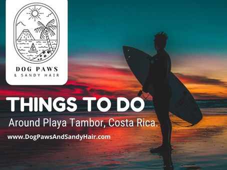 Fun Things To Do In Playa Tambor, Santa Teresa, Montezuma -Costa Rica