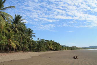 Secluded Beach -Playa Tambor Costa Rica