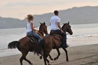 Horse Back Riding on the beach -Playa Tambor