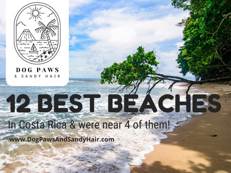 Best 12 Beaches In Costa Rica By The Lonely Planet & We are near 4 of them + a have a bonus BEACH.