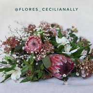 Flores Cecilia Nally