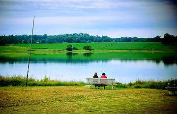 l'été du lac.jpeg