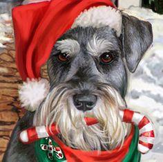 Christmas and dogs