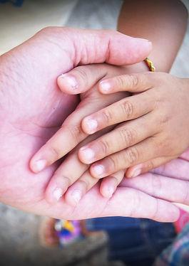 Volunteer Boomers Plus Picture.jpg