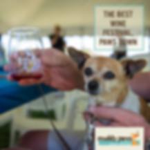 Indigo-Pet-Photography-MP insta 6.jpg